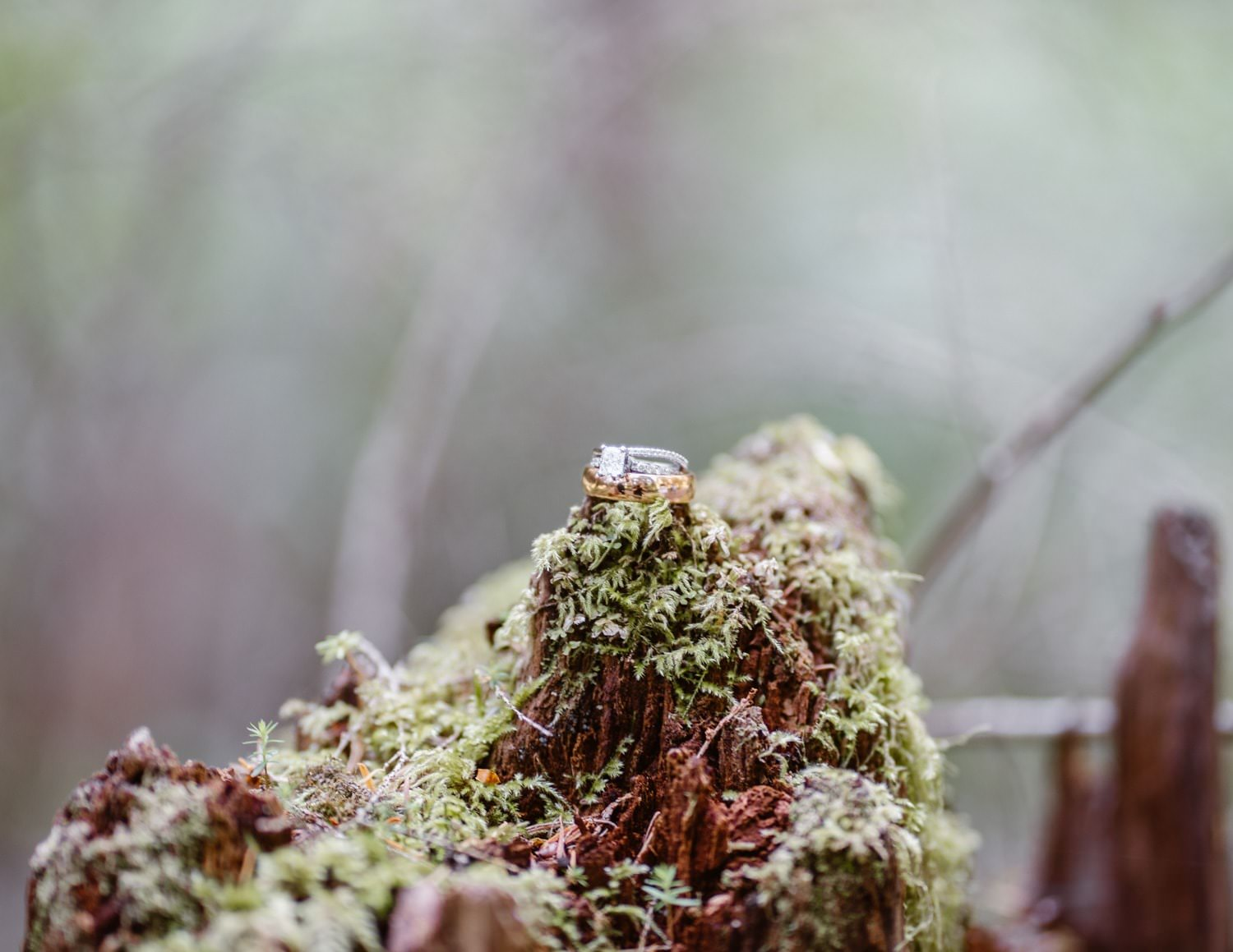 Wedding Rings for Elopement Pack List