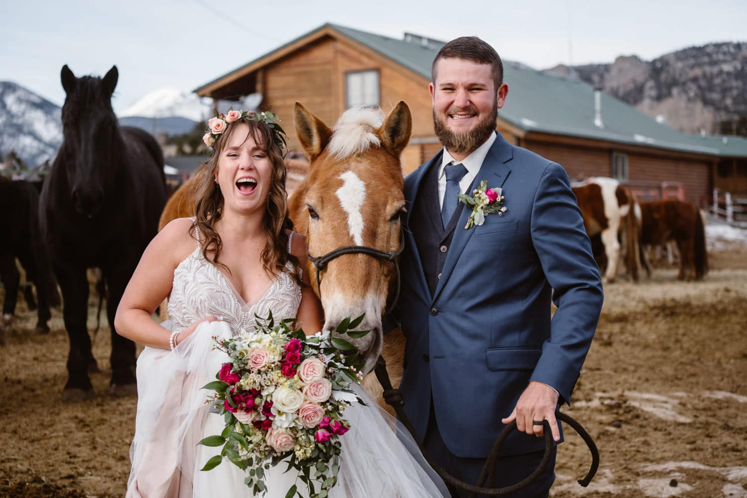 Rocky Mountain National Park Elopement Horses