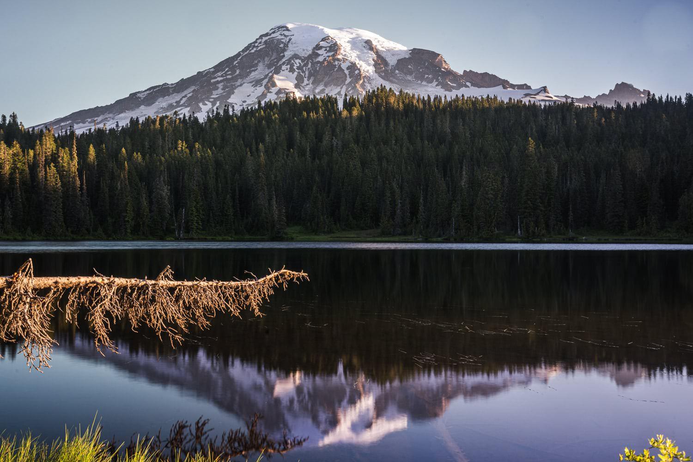 Mount Rainier Elopement Packages & Guide