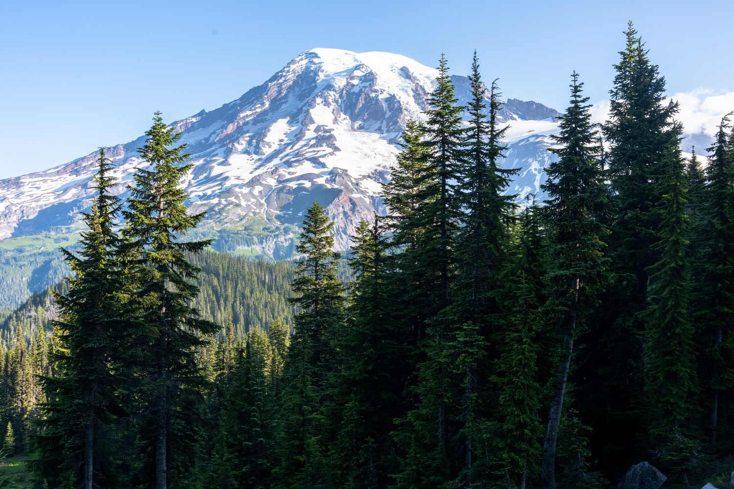 Mount Rainier Elopement Packages