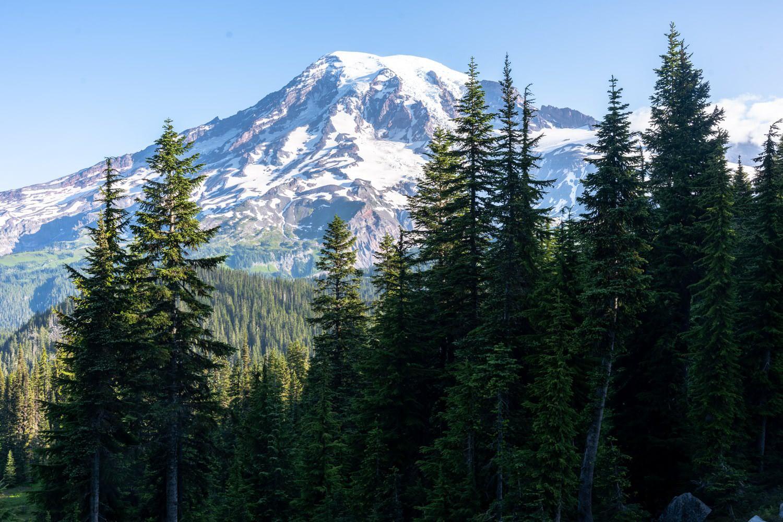 Mount Rainier Elopement Packages