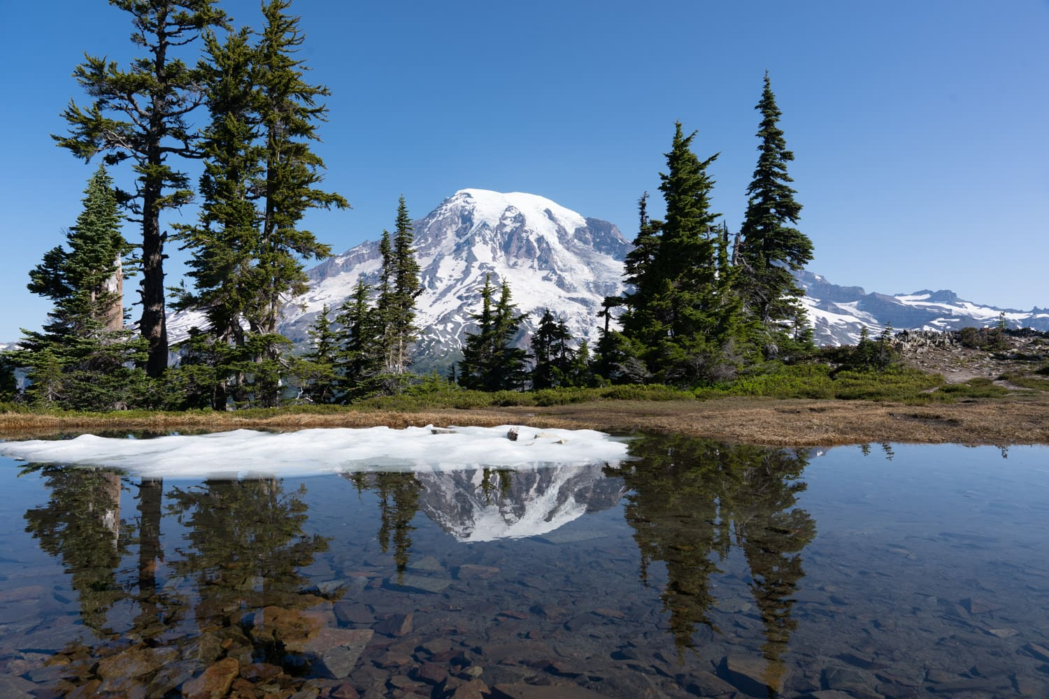 Mount Rainier Alpine Lake Reflection Elopement Packages
