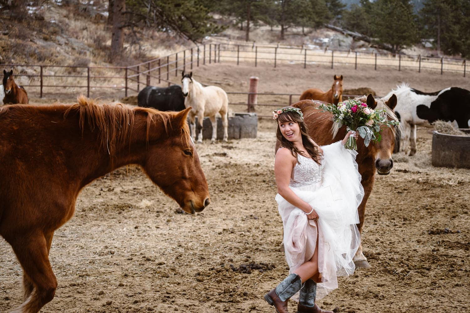 3m Curve Elopement Bride With Horses at Estes Park