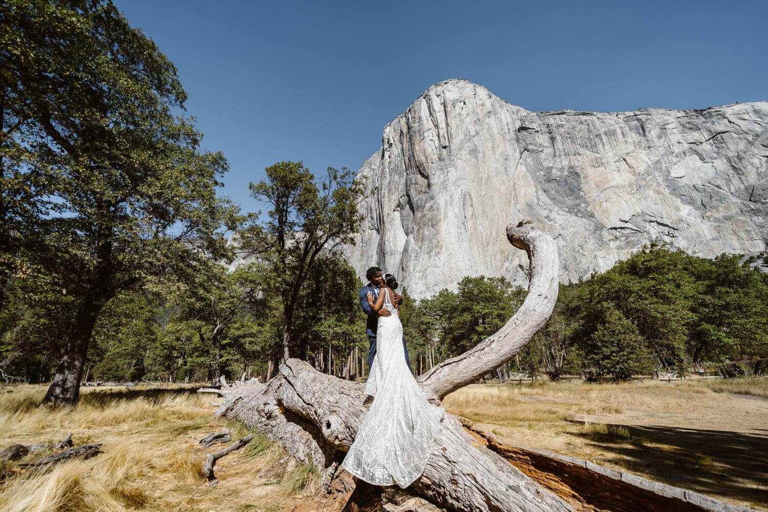 Bride and Groom on Log Yosemite Elopement Guide and Packages