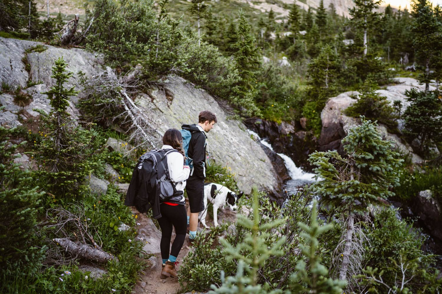 Bride and Groom Hiking With Dog Grand Lake Colorado Elopement