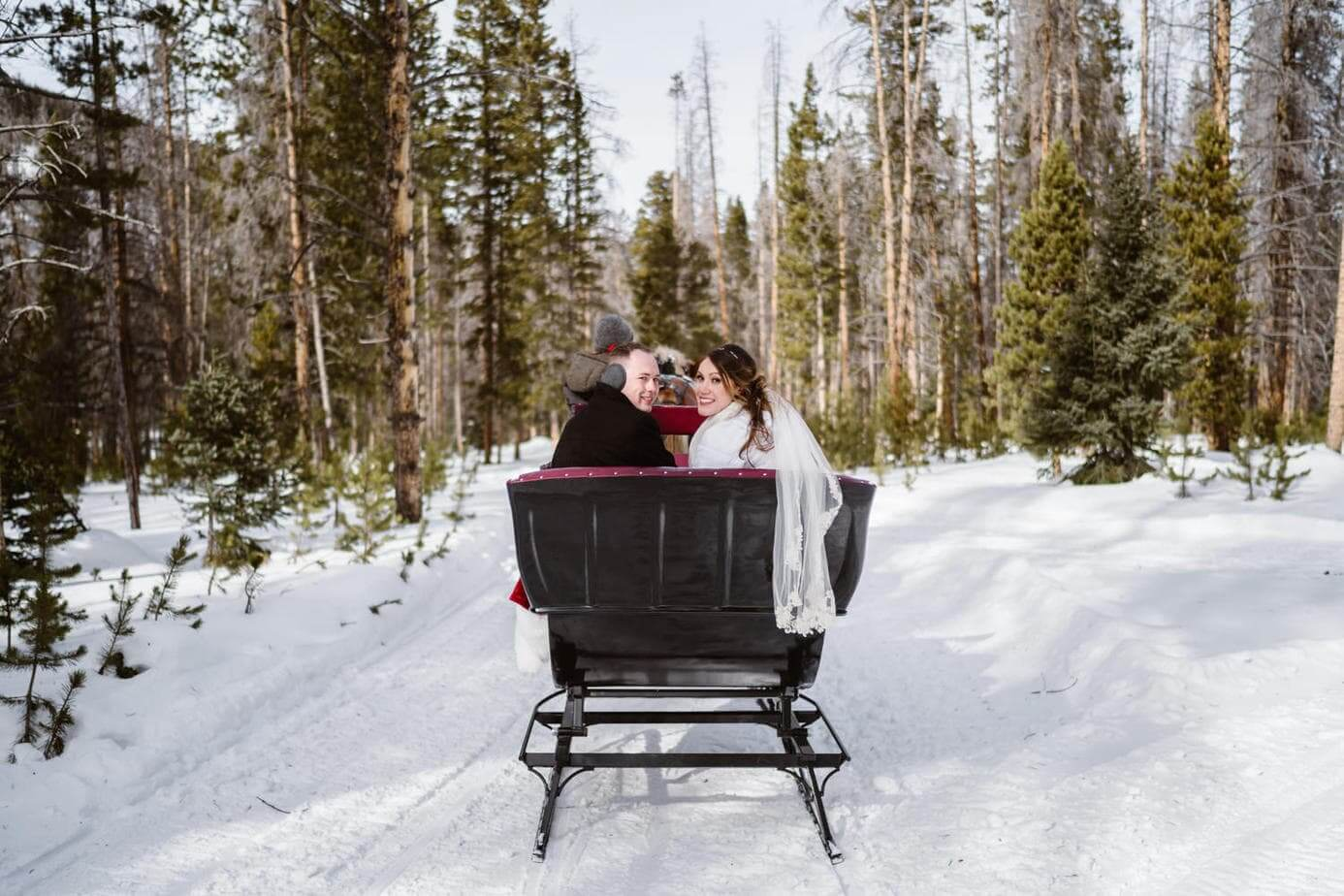 Bride and Groom in Horse-Drawn Sleigh Ride Winter Elopement Guide